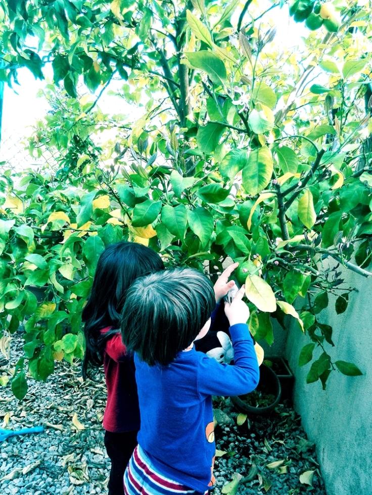 Niños buenos, crianza natural